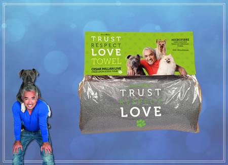 TRUST-RESPECT-LOVE - Towel